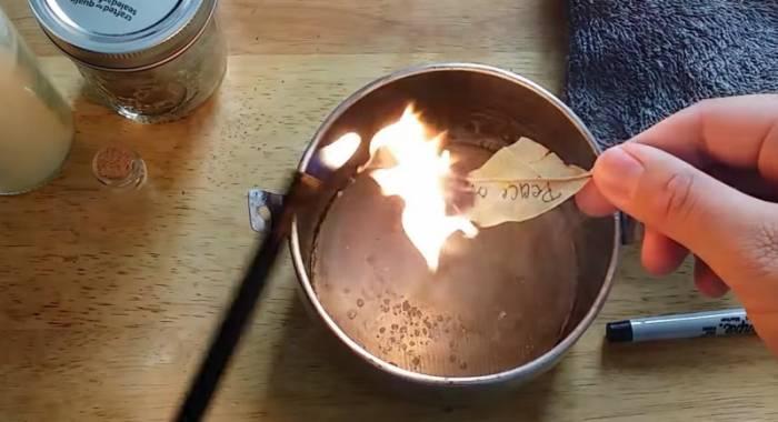 Побачила, як сусідка підпалює вдома лавровий лист. Тепер роблю так само!