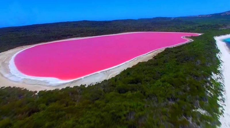 Рожеве Лемурійське озеро — дuво України і немає аналогів в світі! Лікує все, шкіру, суглоби та…