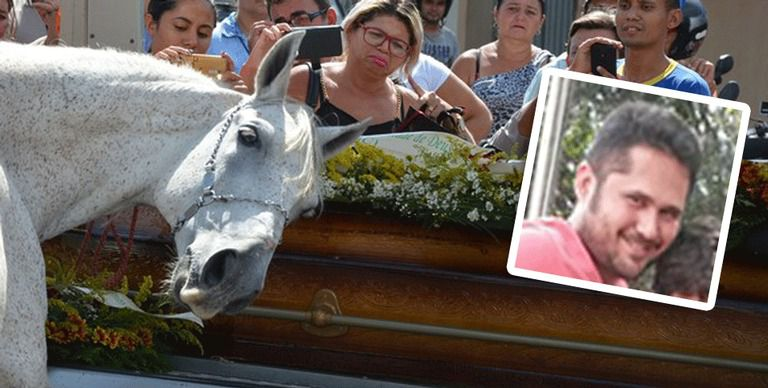Кінь прийшов на похорон господаря. У людей від побаченого відняло дар мови..(кадри, які вражають)