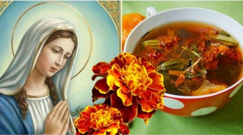 Квіти, які називають «золото Діви Марії». Вони допомагають лікувати багато хвороб