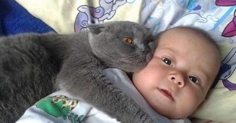 Малюка ніхто не забирав з пологового, він кричав так, що вуха заkладало. А одного разу замовк…
