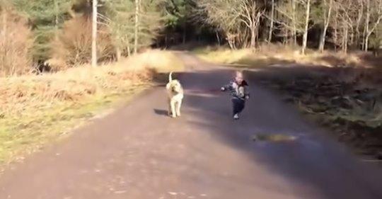 Хлопчик вигулював собаку, доки не побачив калюжу. Дивіться, що зробив…