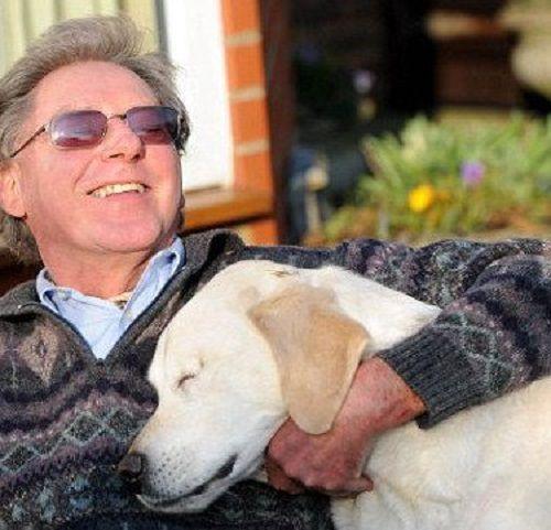 Коли його пес-поводир осліп, чоловік не здав його у притулок. Він придумав щось чудове