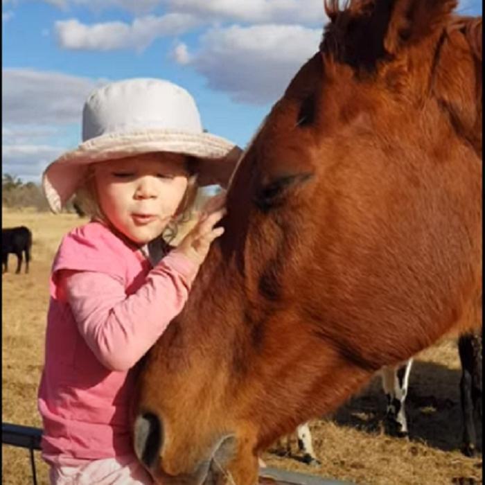 Трирічна дівчинка дуже любить коней і заспівала їм пісню, від якої вони зомліли від задоволення