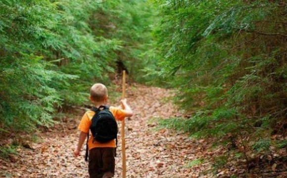 На черговій прогулянці хлопчисько почув жалібне скиглення, він пішов на його звук і набрів на вовченя, яке потрапило в капкан. Олексій згадав всі навички, яким навчив його батько і звільнив звіра з капкана