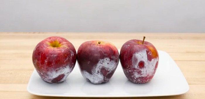 Що буде з магазинним яблуком, якщо обдати його окропом? Я втратила дар мови ….