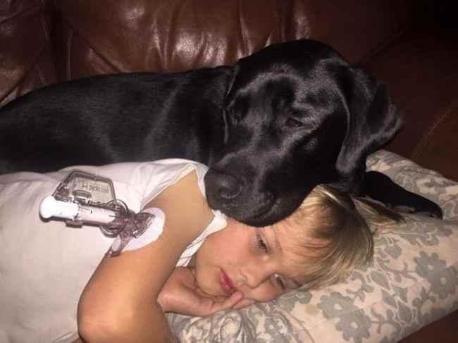 Мати прокинулася від гарчання собаки. Увійшовши в кімнату сина, вона остовпіла