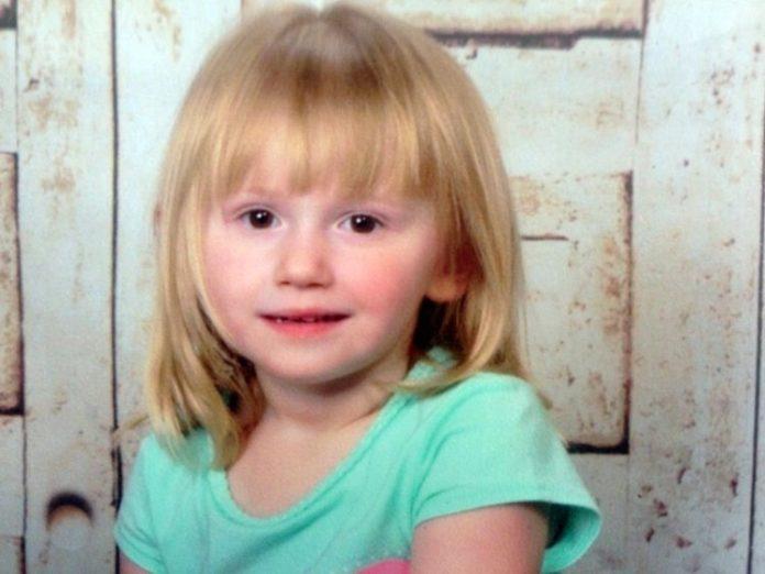 2-річна дочка пропала без сліду. Через три доби на порозі її будинку з'явився пес