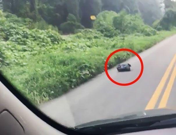 Вона поспішала на роботу, але побачивши на дорозі підозрілий мішок, зупинилася подивитися…