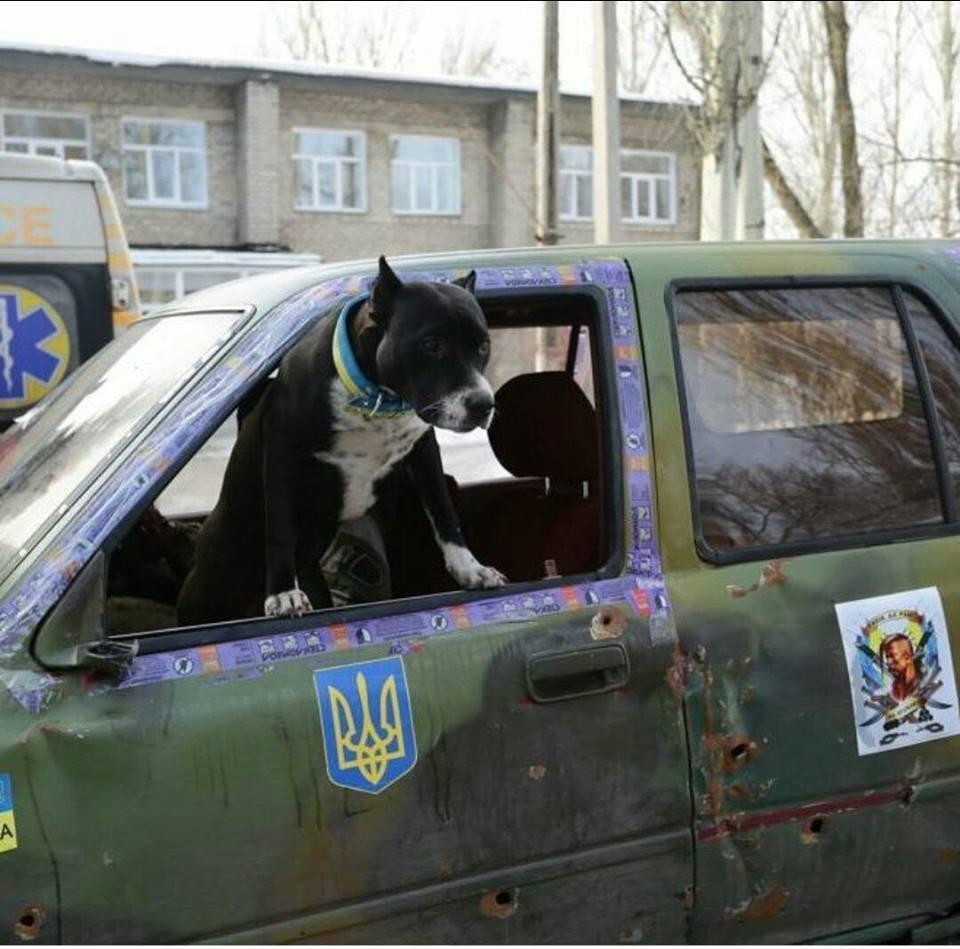 """""""100 км до Києва. Стоїмо на заправці, п'ємо каву. Підходить чоловік: – Хлопці, це ж ви машини на АТО женете?"""