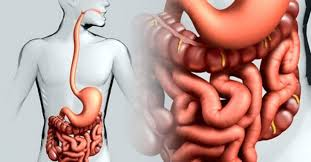 Проблеми зі шлунком, втома, запори, аритмія – винен дефіцит цього мінералу в вашому організмі!