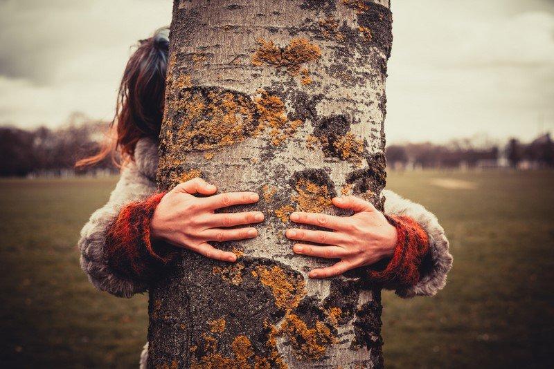 Ось що буде з вами, якщо постійно обіймати березу та інші дерева…