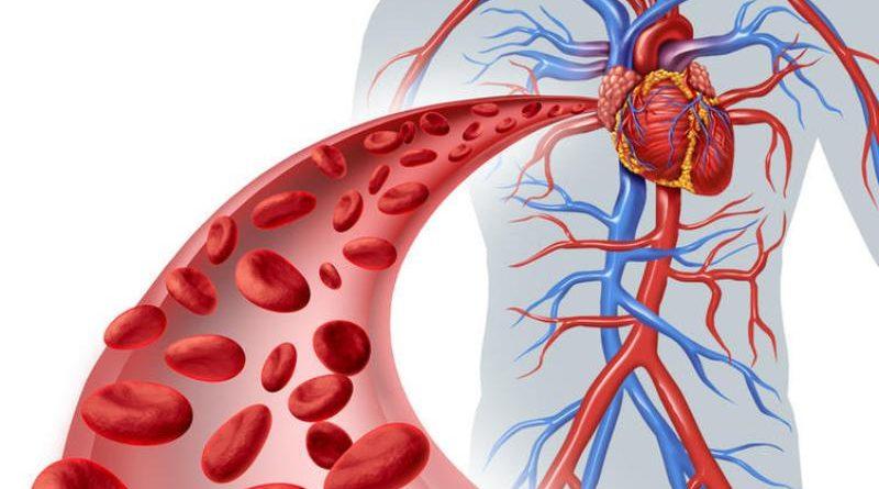 Запuсуйте…8 продуктів, які прочuстять ваші артерії — і додадуть вам 10 років жuття