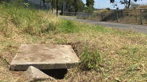 Злий пес тягнув господиню до каналізаційного люку. Те, що вона там побачила — ошелешило усіх!