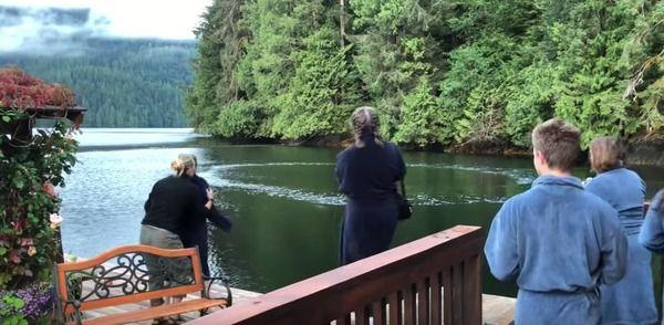 Туристи снідали на березі, коли побачили у воді дивні кола. За мить всі схопилися за камери!