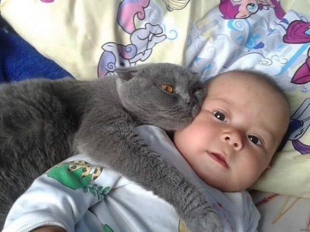 Малюка ніхто не забирав з пологового, він кричав так, що вуха закладало. А одного разу замовк…