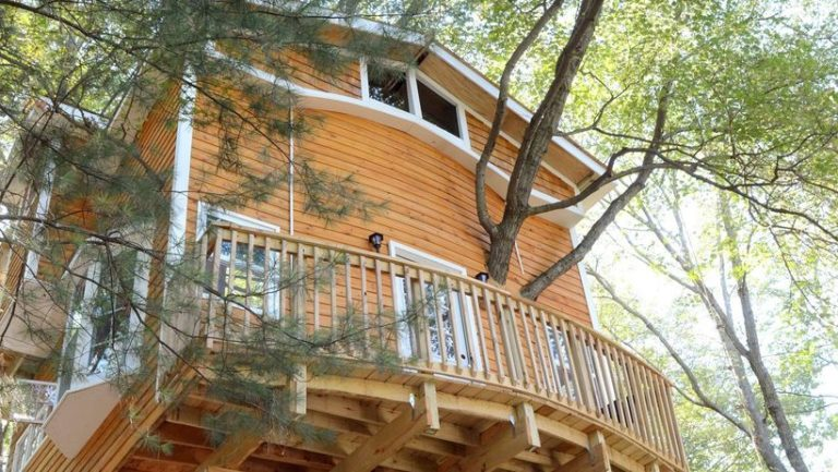 Дід вирішив побудувати для онуків будиночок на дереві, але захопився… (Фото)