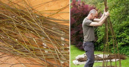 Чоловік зрізав гілочки верби і почекав, поки вони пустили коріння, а потім зробив справжній шедевр!