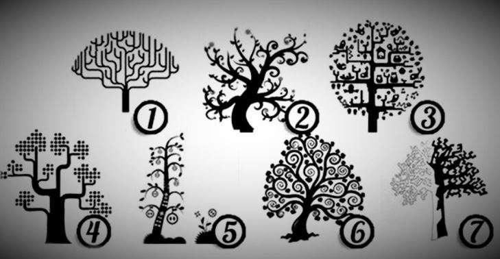 Виберіть дерево, що сподобалося вам більше за інших, та дізнайтеся, чи здатні ви на зраду!