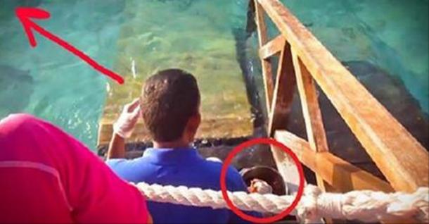 Хлопець просто годував риб, як раптом з'явилося ЦЕ. Я б не встояв на ногах на його місці …