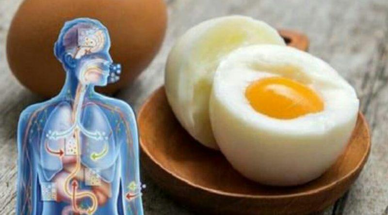 Почніть їстu два яйця в день, і ці дев'ять змін відбудуться в вашому тілі
