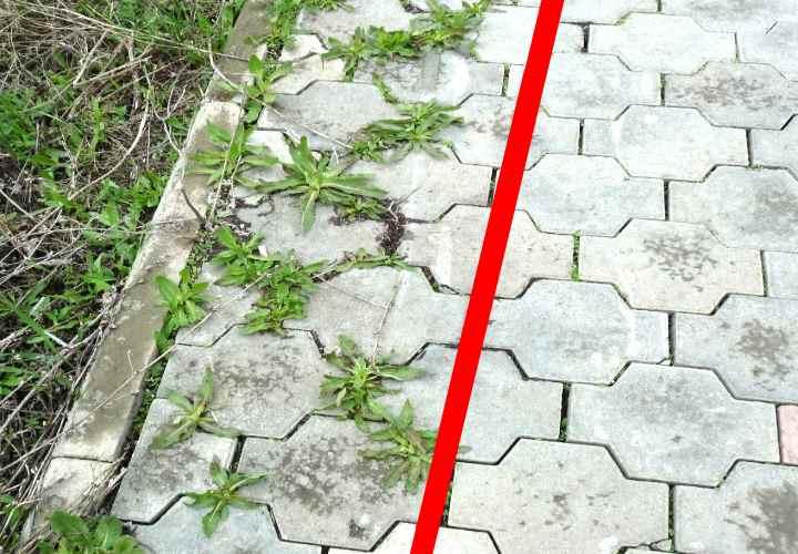 Більше не турбує бур'ян на садовій доріжці! Простий, а головне, ефективний і перевірений засіб!