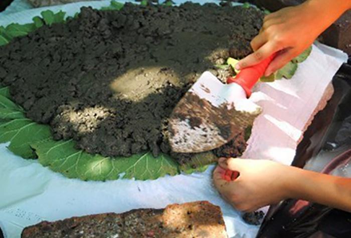Коли вона взяла лист лопуха і почала покривати його цементом, всі дивувалися. Те, що вийшло в результаті, приголомшує!